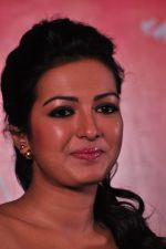 Catherine tresa Photoshoot on 20th Jan 2016 (64)_56a0b0b303c96.JPG