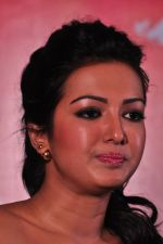 Catherine tresa Photoshoot on 20th Jan 2016 (67)_56a0b0b57bd60.JPG