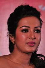 Catherine tresa Photoshoot on 20th Jan 2016 (68)_56a0b0b67315c.JPG