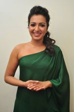 Catherine tresa Photoshoot on 20th Jan 2016 (84)_56a0b0c3e69d1.JPG