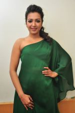 Catherine tresa Photoshoot on 20th Jan 2016 (90)_56a0b0cbf330c.JPG