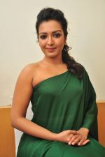 Catherine tresa Photoshoot on 20th Jan 2016 (99)_56a0b0d7ba039.JPG