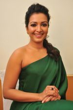 Catherine tresa Photoshoot on 20th Jan 2016 (104)_56a0b0de8358e.JPG