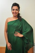 Catherine tresa Photoshoot on 20th Jan 2016 (95)_56a0b0d1d51b2.JPG