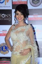 at Lions Awards 2016 on 22nd Jan 2016 (27)_56a38a8366212.JPG
