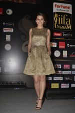 Taapsee Pannu at IIFA Utsavam Press Meet on 23rd Jan 2016