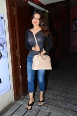 Ameesha Patel snapped at PVR Juhu on 24th Jan 2016