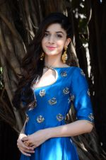 Mawra Hocane at Sanam Teri Kasam promotions on 24th Jan 2016 (39)_56a5d188780d8.JPG