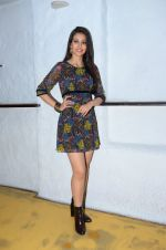 Navneet Kaur Dhillon photo shoot on 26th Jan 2016 (12)_56a86570bc860.JPG