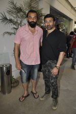 Bobby Deol, Sunny Deol at Aligargh screening on 27th Jan 2016 (16)_56a9b8cce24b3.JPG
