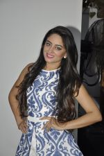Mahi vij at Khatron Ke Khiladi meet on 27th Jan 2016 (24)_56a9be1a2a897.JPG