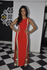 Mukti Mohan at Khatron Ke Khiladi meet on 27th Jan 2016