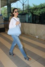 Sophie Chaudhary snapped at airport  on 30th Jan 2016