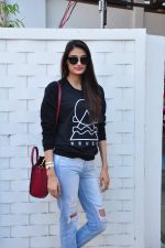 Athiya Shetty at Araish on 4th Feb 2016