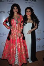 Ayesha Takia at national jewellery awards on 6th Feb 2016 (21)_56b739532c432.JPG
