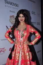 Ayesha Takia at national jewellery awards on 6th Feb 2016 (30)_56b7395f2d3a3.JPG