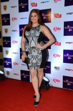 Vahbbiz Dorabjee at Tellychakkar bash on 11th Feb 2016 (27)_56bdcd389eeb6.JPG