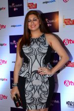 Vahbbiz Dorabjee at Tellychakkar bash on 11th Feb 2016 (29)_56bdcd3c476e5.JPG