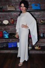 Bhagyashree at Ghanasingh Amy Billimoria store launch on 11th Feb 2016