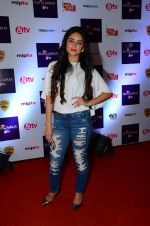 Mahi Vij at Tellychakkar bash on 11th Feb 2016 (95)_56bdcd8f6d72e.JPG