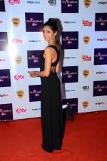 Ratan Rajput at Tellychakkar bash on 11th Feb 2016 (120)_56bdcdc2ad35b.JPG