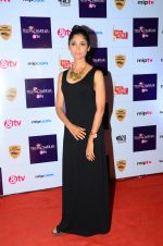 Ratan Rajput at Tellychakkar bash on 11th Feb 2016 (122)_56bdcdc87c805.JPG