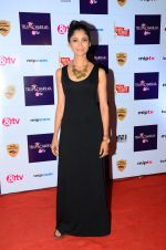 Ratan Rajput at Tellychakkar bash on 11th Feb 2016 (123)_56bdcdca51f76.JPG