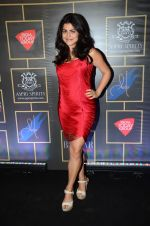 Shenaz Treasury at Harper_s Bazaar bride anniversary in Mumbai on 18th Feb 2016 (454)_56c6f0abb4b05.JPG