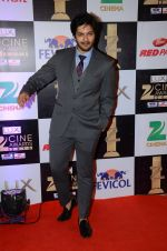 Ali Fazal at zee cine awards 2016 on 20th Feb 2016