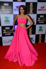 Amruta Khanvilkar at zee cine awards 2016 on 20th Feb 2016 (371)_56c9925d14da9.JPG