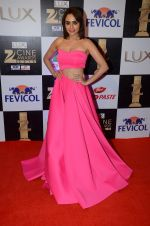 Amruta Khanvilkar at zee cine awards 2016 on 20th Feb 2016 (185)_56c99258d5715.JPG