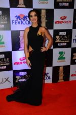 Amy Jackson at zee cine awards 2016 on 20th Feb 2016