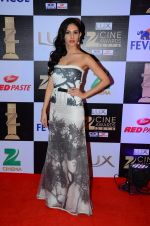 Amyra Dastur at zee cine awards 2016 on 20th Feb 2016