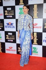 Gauhar Khan at zee cine awards 2016 on 20th Feb 2016