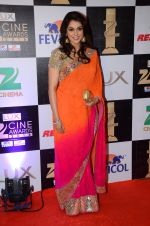 Isha Koppikar at zee cine awards 2016 on 20th Feb 2016 (196)_56c99928dcf0f.JPG