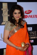 Isha Koppikar at zee cine awards 2016 on 20th Feb 2016 (381)_56c9992fe4797.JPG