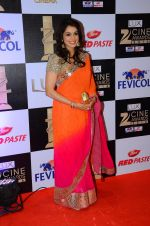 Isha Koppikar at zee cine awards 2016 on 20th Feb 2016 (382)_56c9993197824.JPG