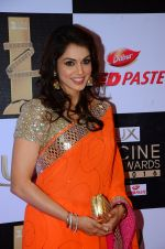 Isha Koppikar at zee cine awards 2016 on 20th Feb 2016 (383)_56c9993325446.JPG