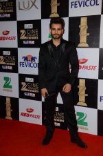 Karan Tacker at zee cine awards 2016 on 20th Feb 2016
