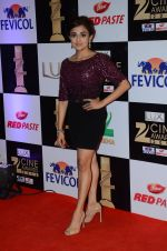 Monali Thakur at zee cine awards 2016 on 20th Feb 2016 (100)_56c999cf30387.JPG
