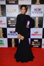 Monica Dogra at zee cine awards 2016 on 20th Feb 2016 (621)_56c999ed847d3.JPG