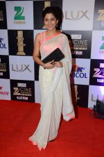 Mrunmayee Deshpande at zee cine awards 2016 on 20th Feb 2016 (221)_56c999fa33bf6.JPG