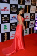 Nushrat Bharucha at zee cine awards 2016 on 20th Feb 2016 (527)_56c99a2955046.JPG