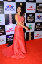 Nushrat Bharucha at zee cine awards 2016 on 20th Feb 2016 (528)_56c99a2aa5c7b.JPG