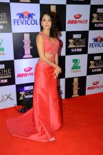 Nushrat Bharucha at zee cine awards 2016 on 20th Feb 2016 (529)_56c99a2c7c9dd.JPG