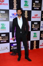Purab Kohli at zee cine awards 2016 on 20th Feb 2016 (305)_56c99b98e50c9.JPG