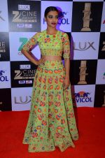 Radhika Apte at zee cine awards 2016 on 20th Feb 2016