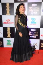 Rituparna Sengupta at zee cine awards 2016 on 20th Feb 2016