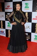 Rituparna Sengupta at zee cine awards 2016 on 20th Feb 2016 (44)_56c99c64b7b14.JPG