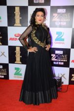 Rituparna Sengupta at zee cine awards 2016 on 20th Feb 2016 (45)_56c99c6647302.JPG
